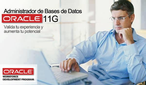 Administrador DBA